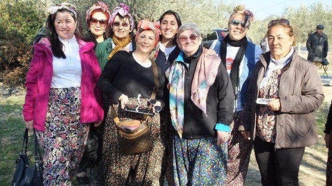 Canan Karatay Gömeç'te Zeytin Hasat Şenliğine Katıldı
