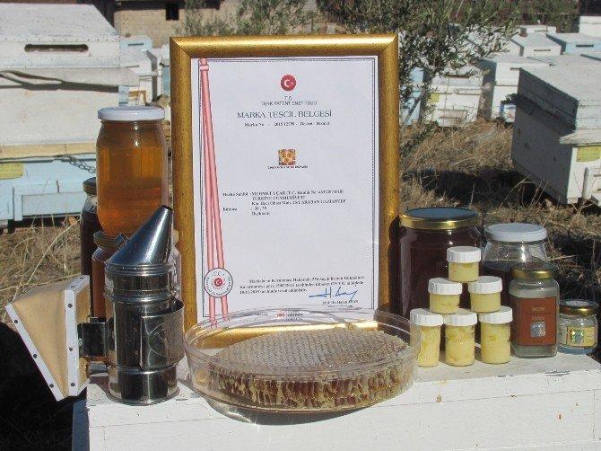 Araban'da Patentli Organik Bal Üretimine Başlandı
