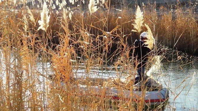Karasu Sazlığı Köylülerin Ekmek Kapısı Oldu