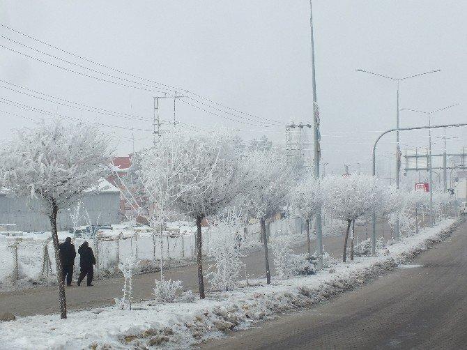 Malazgirt'te Sibirya Soğukları