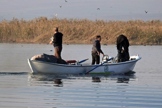 Uluabat Gölündeki Kuşlara Yem Bırakıldı