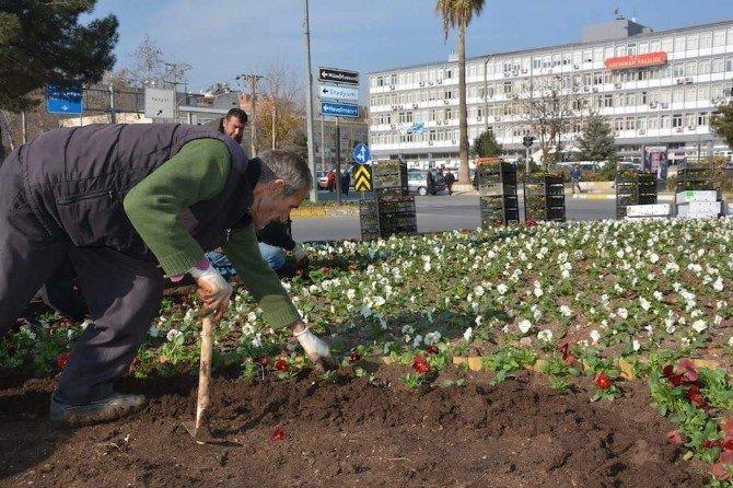 Park Ve Bahçe Düzenlemeleri Devam Ediyor