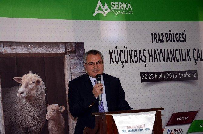 SERKA, Küçükbaş Hayvancılık Çalıştayı Düzenledi