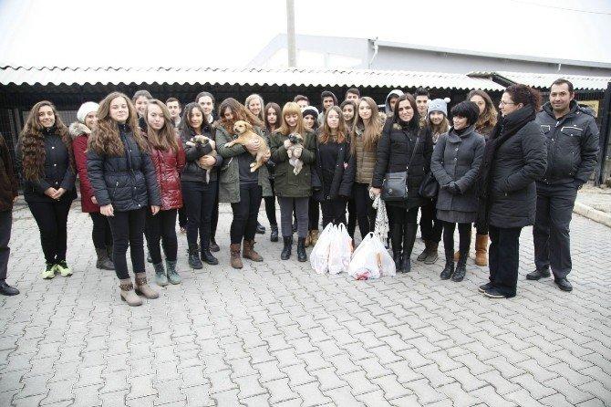 Liseli Gençler Hayvan Dostlarıyla Buluştu