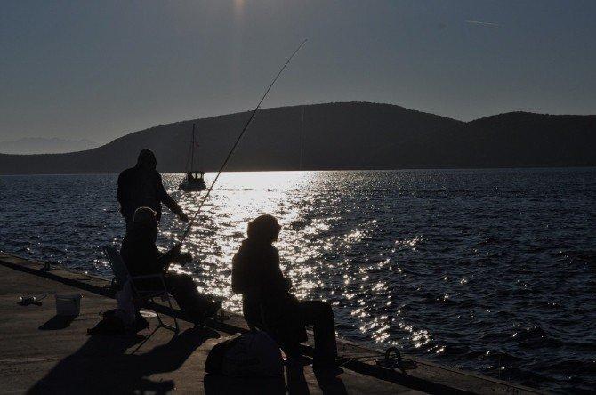Balık Bahane, Hava Şahane
