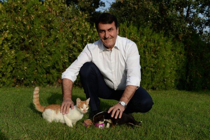 Bursa'da 375 sokak hayvanı sahiplendirildi