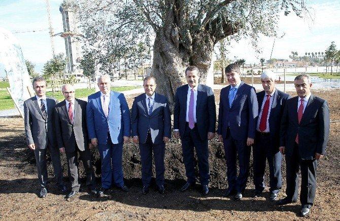 Bakan Faruk Çelik, EXPO 2016 Alanına Ağaç Dikti