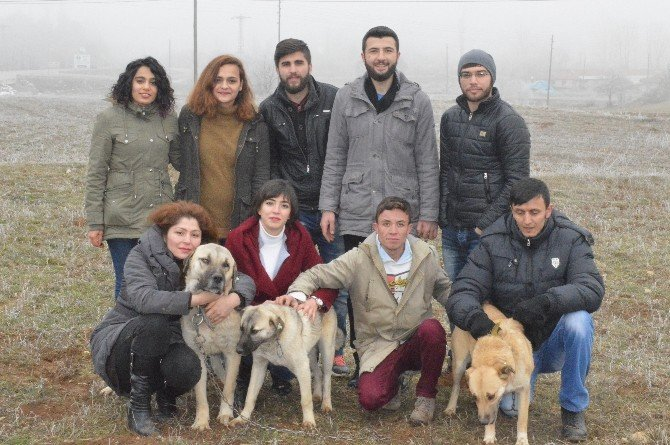 Kastamonu'da Üniversiteli Öğrencilerden Örnek Davranış