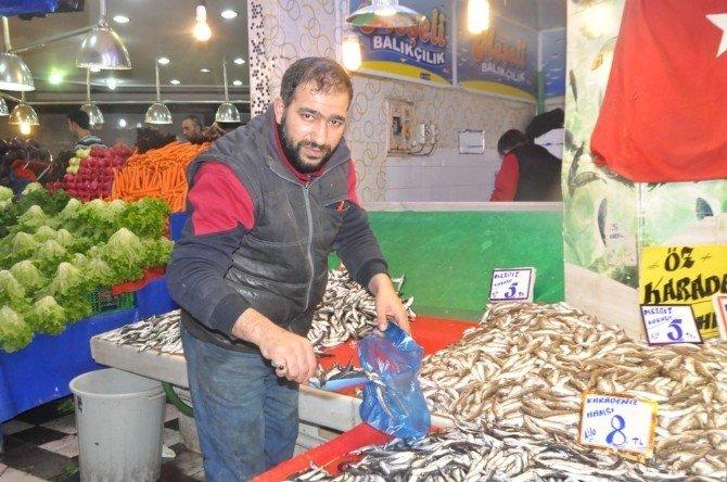 Balıkçılar Bolluktan Memnun