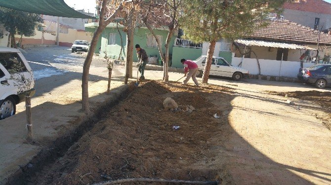 Alaşehir'de Yeşil Alan Çalışmaları Sürüyor