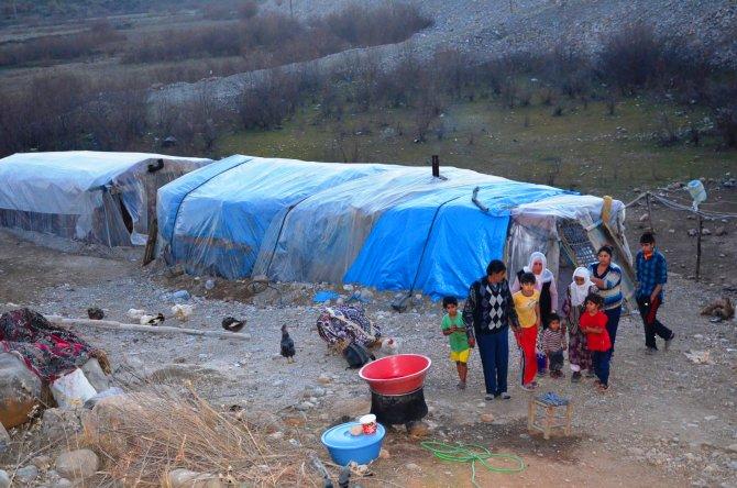 Batman'da 10 nüfuslu aile, soğukta naylon barakada yaşam mücadelesi veriyor