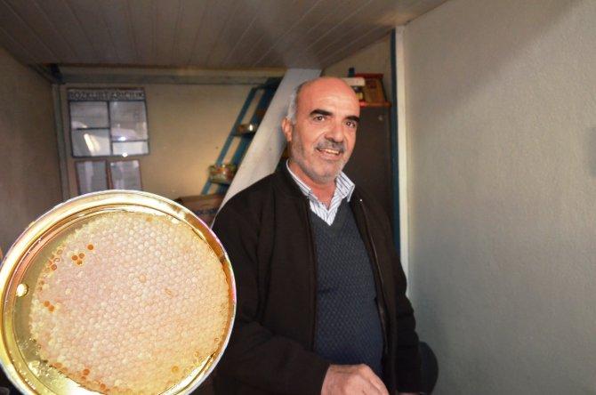 Organik bal üreticileri umduklarını bulamadı