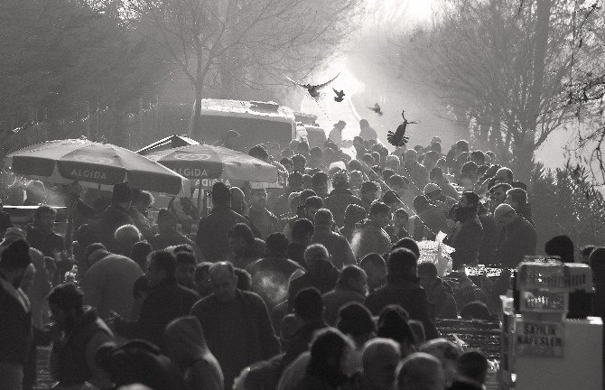 """""""Adada Çarşı Pazar Halleri"""" Fotoğraf Yarışması Sonuçları Açıklandı"""