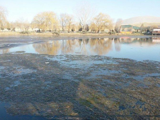 Ceyhan Nehri'nin kaynağı kirliliğe gömüldü