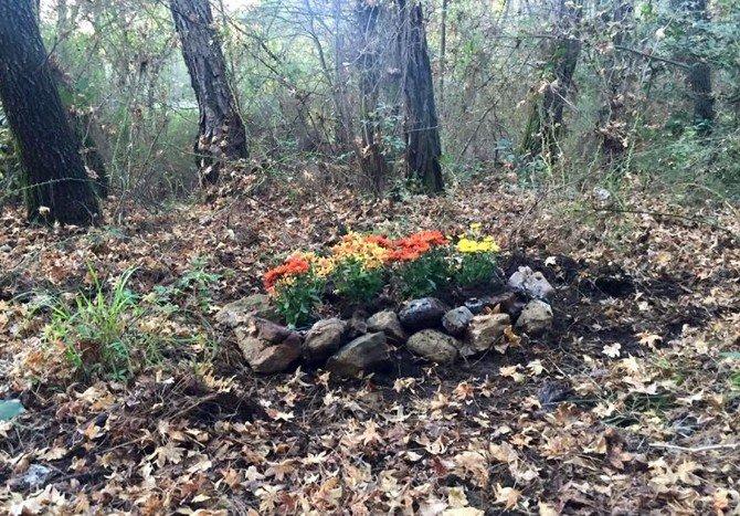 Ölen Köpeğine Mezar Yapıp Çiçeklerle Süsledi