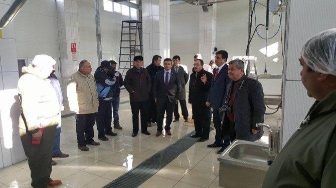 Modernize Edilen Pazaryeri Belediyesi Mezbahanesi Hizmete Girdi