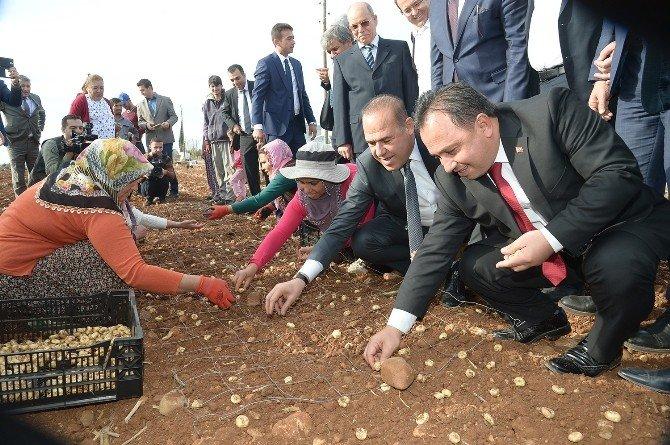 """Sözlü: """"Adana'yı Türkiye'nin Lokomotif Şehri Yapacağız"""""""