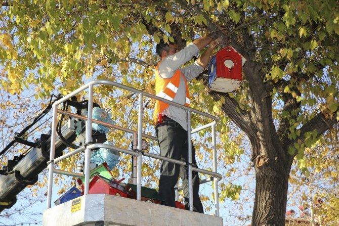 Öğrenciler kuşlar üşümesin diye 25 kuş evi yaptı