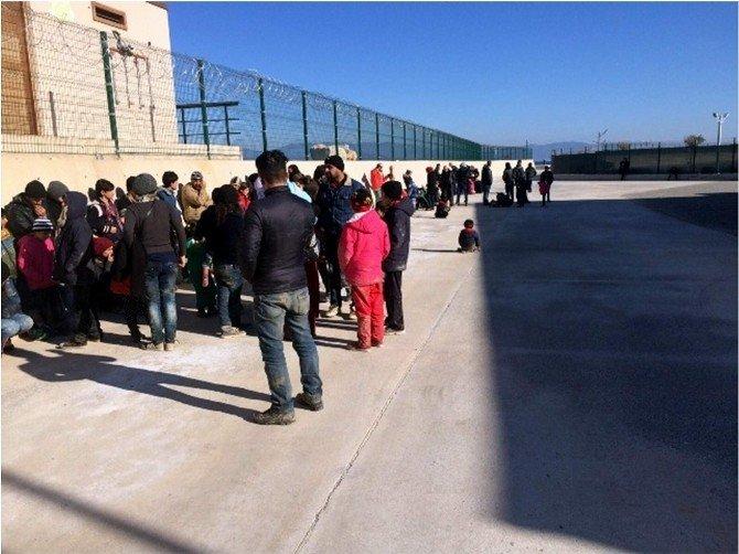 Didim'de 50 Suriyeli Göçmen Yakalandı
