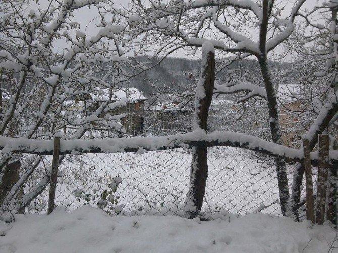 Kar Yağışı Cide'de Etkisini Sürdürüyor