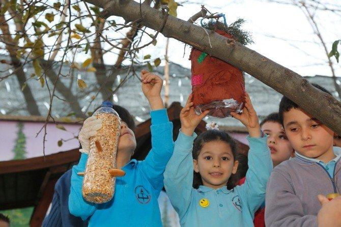 Plastik Atıklardan Kuş Yuvası Yapıp, Ağaçlara Astılar