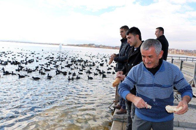 Başkan Duruay Elleriyle Karabatakları Besledi