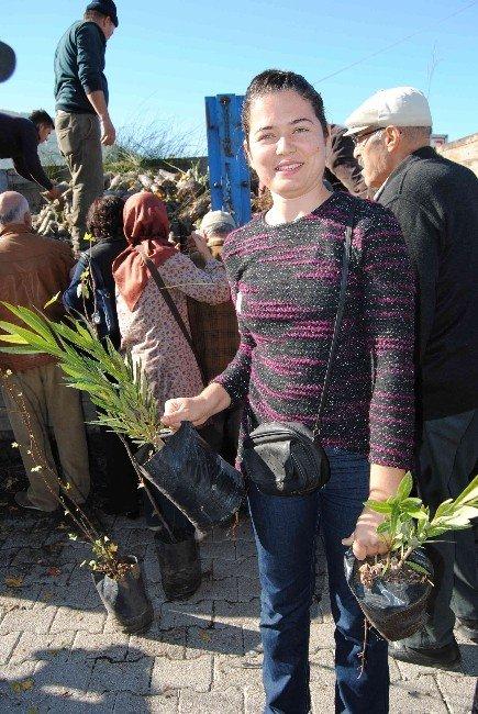 Orman İşletmeden Halka Yeni Yıl Hediyesi
