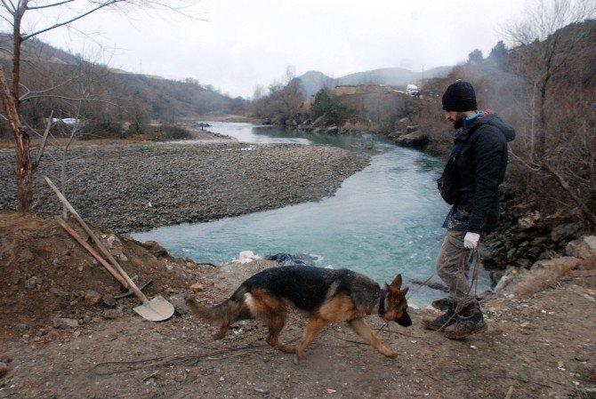 Kayıp Çocukları Özel Eğitimli Köpekler Arıyor