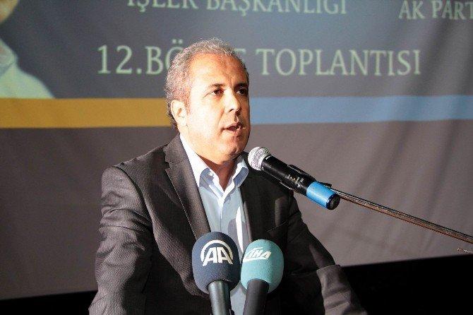 Şamil Tayyar'dan 'Özerklik' Talebine Tepki