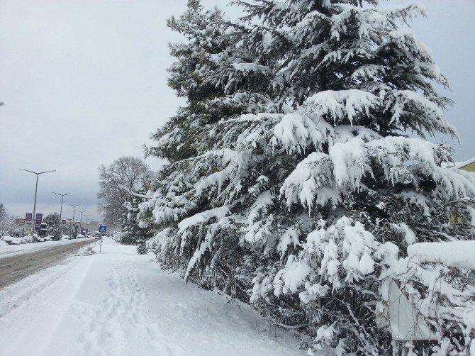 Bursa'da Kar Yağışı Hayatı Olumsuz Etkiliyor