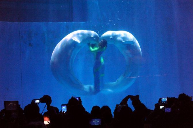 Yeni yılı su altındaki konserle karşıladılar