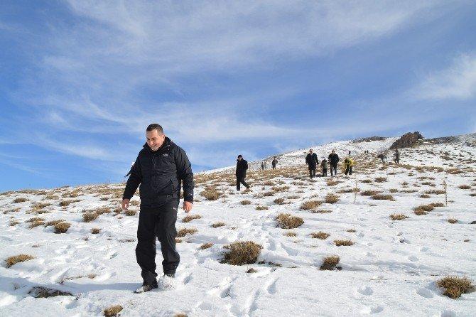 Eleşkirt'te Doğaya Yem Bırakıldı