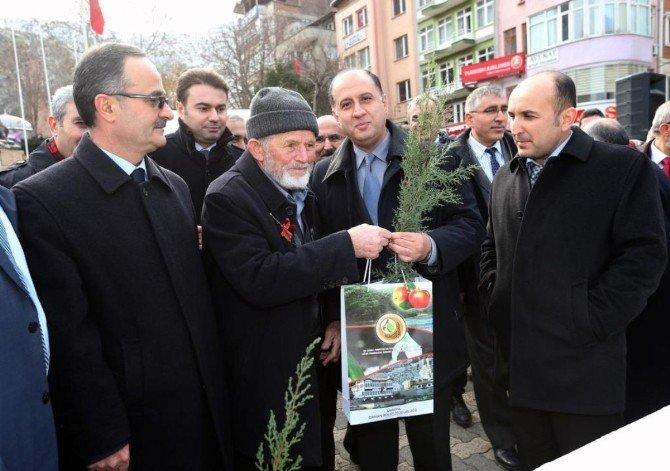 Amasya'da Halka Bin Fidan Dağıtıldı