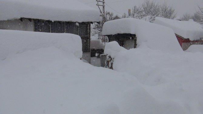 Bitlis'te 300 köy yolu kapandı, evler kar altında kayboldu