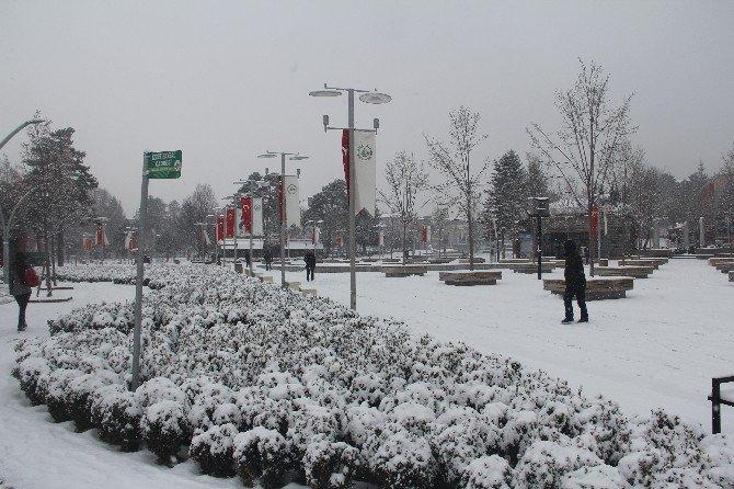 Bolu Kar Yağışına Teslim Oldu