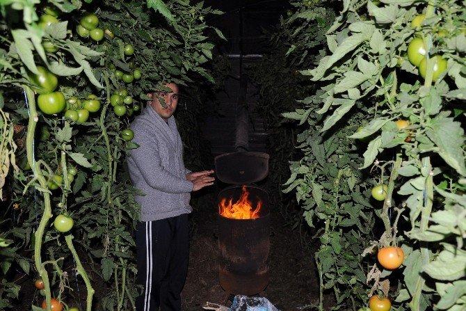 Çiftçi Yeni Yıla Zirai Don Nöbetiyle Girdi