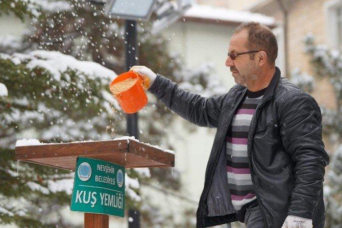 Nevşehir Belediyesi Kuşlara Yem Bıraktı