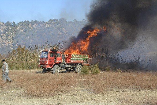 Ormanlık Alandaki Yangın Seraları Da Yaktı