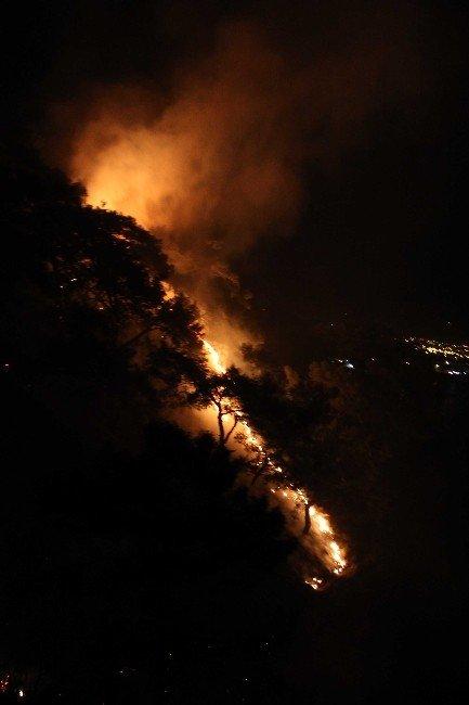 2016 Yılının Orman Yangını Fethiye'de Çıktı