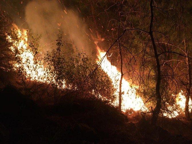 Marmaris Yeni Yıla Orman Yangınıyla Başladı