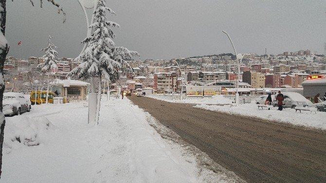 Alaplı'da Kar Yaşamı Felç Etti