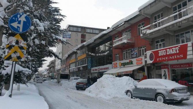 Tatvan'da kar yağışı hayatı olumsuz etkiledi