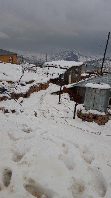 Şemdinli'de Kar Yağışı Hayatı Olumsuz Etkiliyor