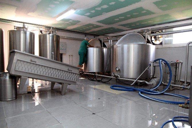 Ziraat Fakültesi Entegre Süt Ünitesinde Üretime Başladı
