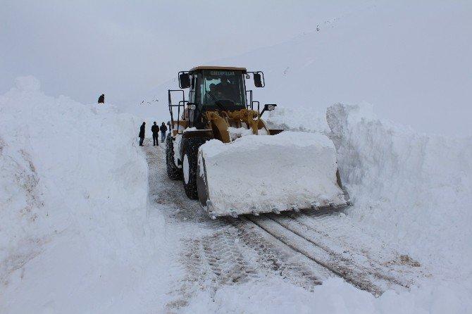 Kar Ve Çığ Nedeniyle Yüzlerce Araç Yolda Kaldı