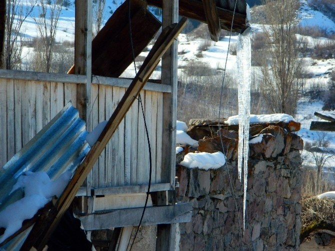 Eksi 20 Dereceyi Gören Posof Buz Tuttu