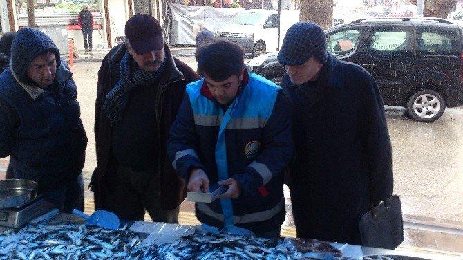 Bilecik'te Balık Satışı Yapan Yerler Denetlendi