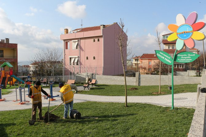 Büyükçekmece Belediyesi 'ozon'un tamiri için ceviz ağacı dikiyor