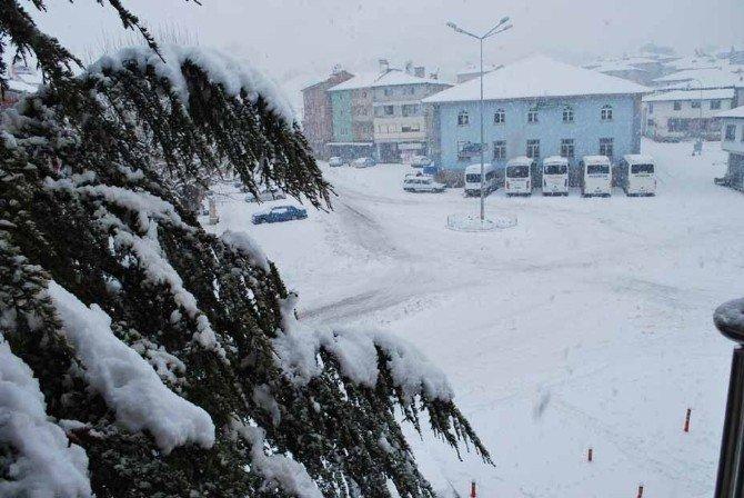 Pazarlar'da Kar Sevinci