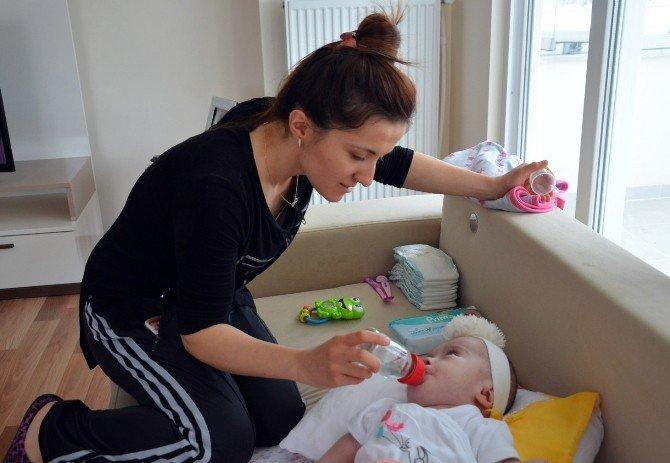 Cam Kemik Hastası Efsa Bebek Yardım Bekliyor
